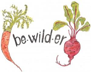Bewilder logo1